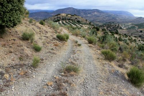 Camino antiguo de Jaén