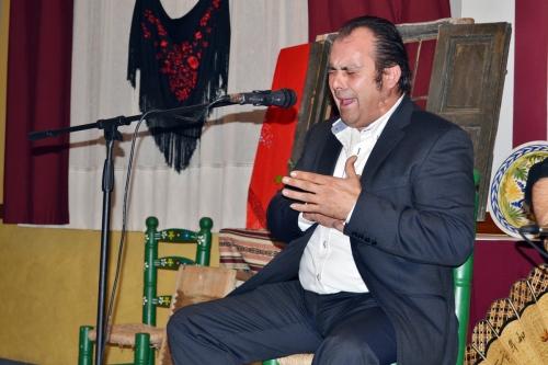 flamenco 2015 a web